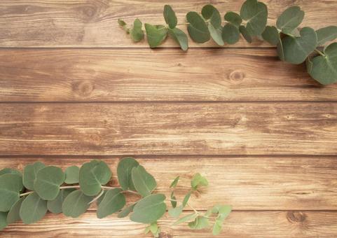 Eucalyptus and wood grain floor frame