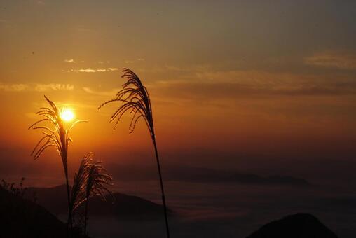 Sunset and Susuki