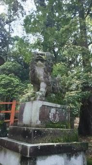 Kasuga Taisha guardian dog