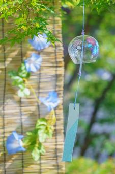 Wind chime under the maple tree Sudare morning glory