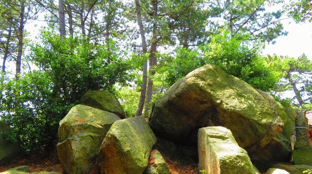 5 월 상순의 사카이 데시 瀬居島의 거석