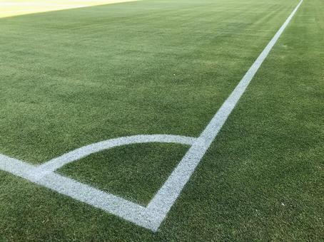 soccer pitch ground grass