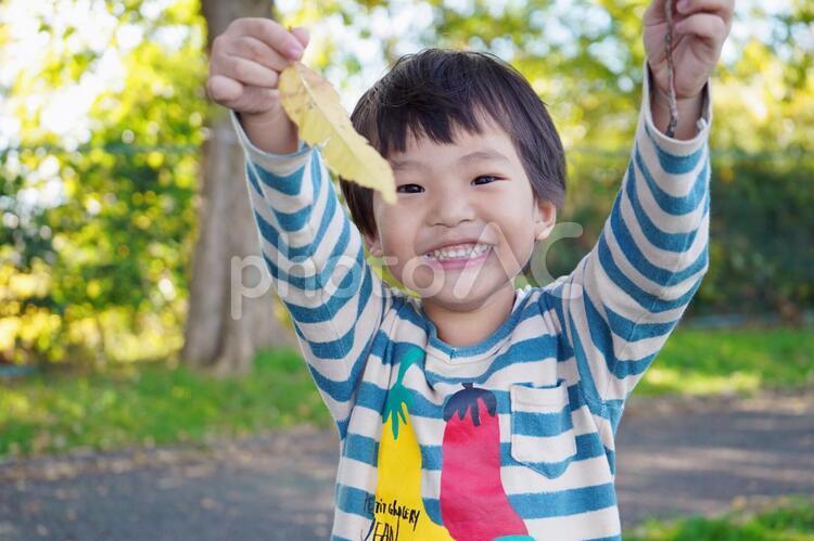 秋の公園と子供の写真