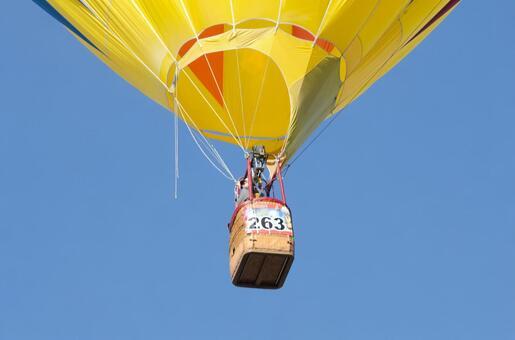 气球231