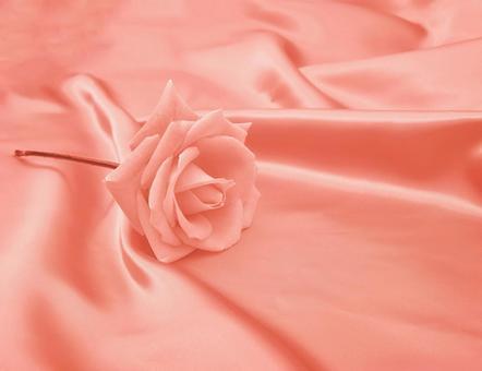 Pastel roses