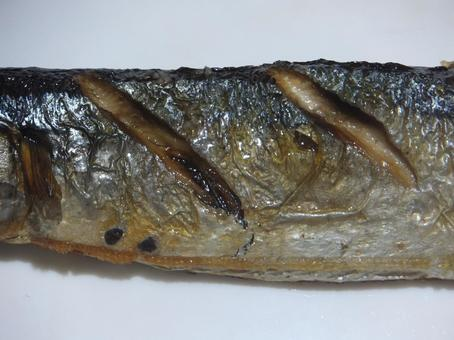 Grilled saury belly zoom