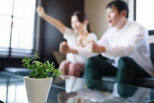 Male and female clapping hands with foliage plants