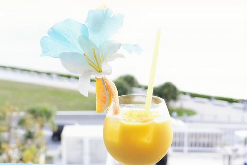 看起來很美味的橙汁