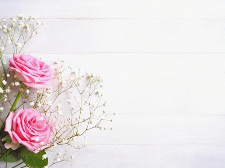 粉紅玫瑰和霞蘇木紋背景