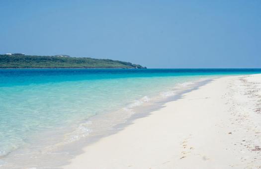 한여름의 모래 사장