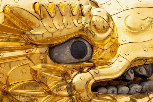 Gold killer whale face