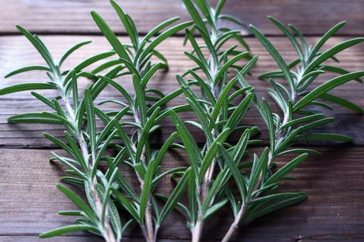 Rosemary (herb) on a wood grain background
