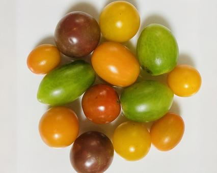Color tomatoes (10)
