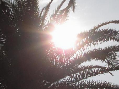 눈부신 햇살 3