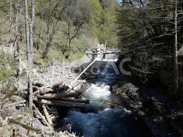 山中の川の滝の写真