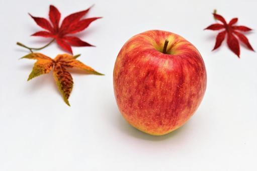 Apple autumn copy space