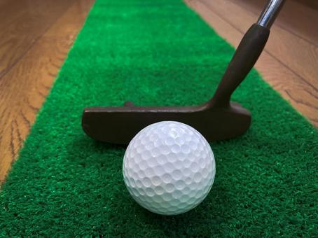 Golf club / golf ball / artificial turf / putter practice / indoor practice / stay home / sports