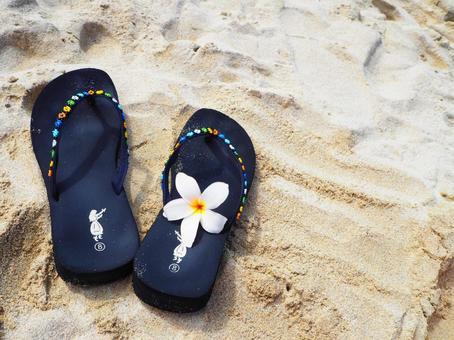 Sandals and Plumeria