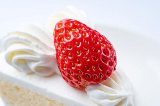 딸기 쇼트 케이크