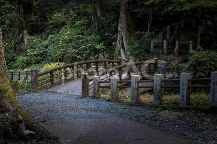 大雄山最乗寺の怪しい森と橋の写真