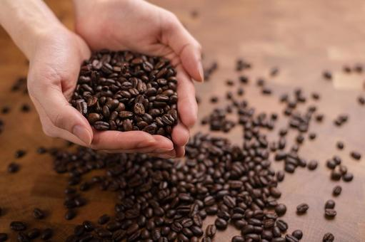 Coffee beans in the palm
