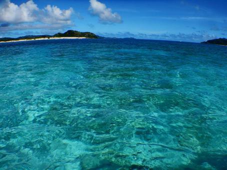라마 블루의 바다