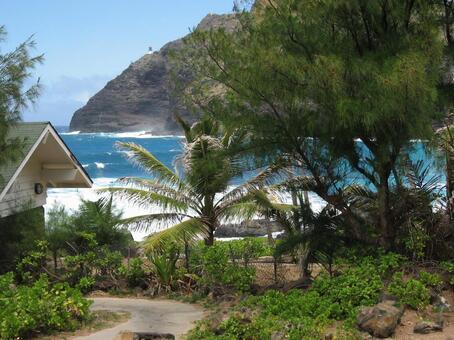 Hawaiian countryside (near Honolulu)