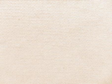 Canvas texture 2