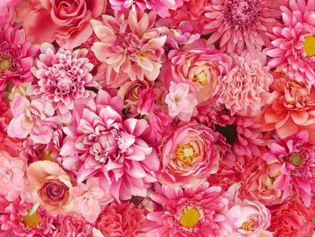 Background (red, pink flowers)