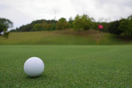 Golf course golf ball putting green