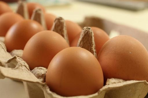 낳고 신선한 달걀