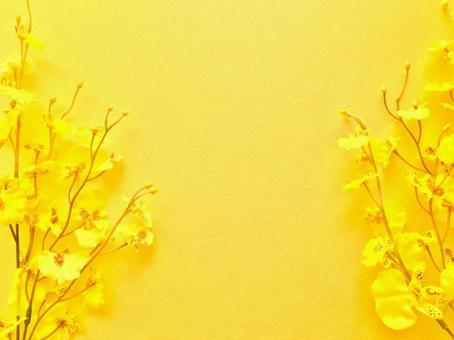 Oncidium flower frame