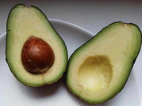 Avocado Cross section of avocado