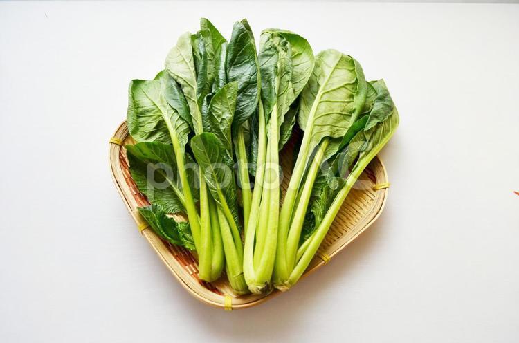 ザルにはいった小松菜(白背景)の写真