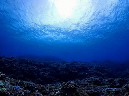 Mysterious blue seabed / Ishigaki Island, Okinawa