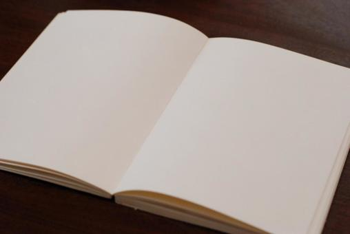 Pure white book