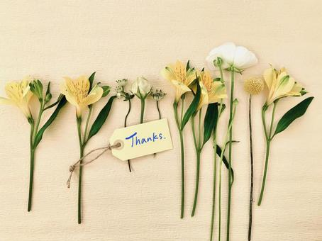 "Yellow flower background with ""Thanks"" tag"