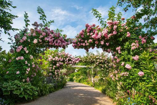 見附英式花園