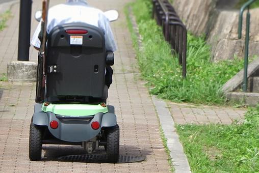 Electric Senior Cart