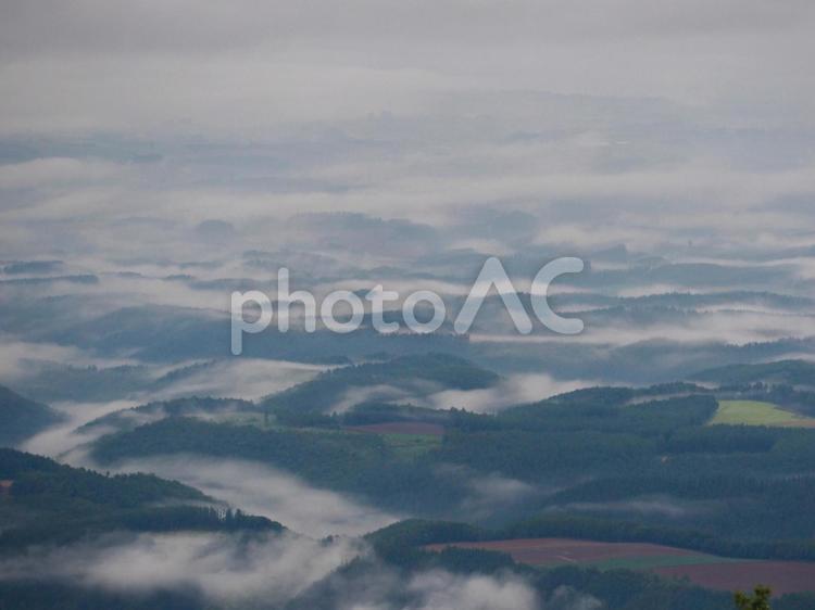 上富良野の朝の写真