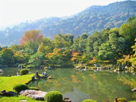 Tenryuji Sogen Pond Garden