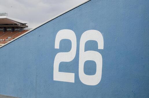 National Arena 47