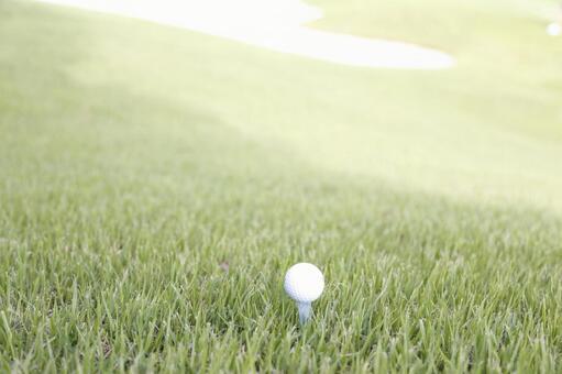 Grass and golf ball 13