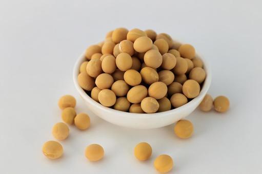 Soybean soybean