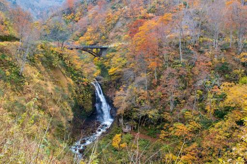 Fudo Waterfall in Autumn Leaves (Myoko Kogen)