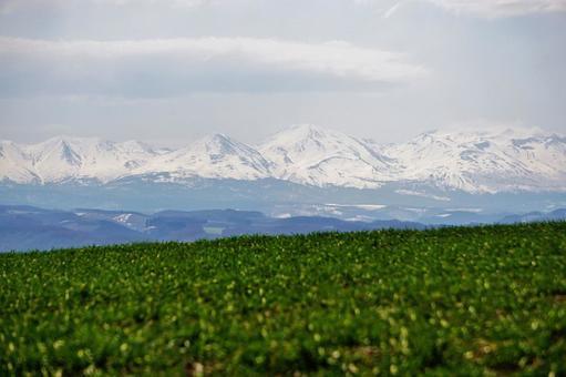 Daisetsuzan mountain range and green hills