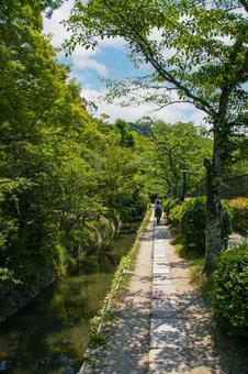 Kyoto Summer Philosophy Road