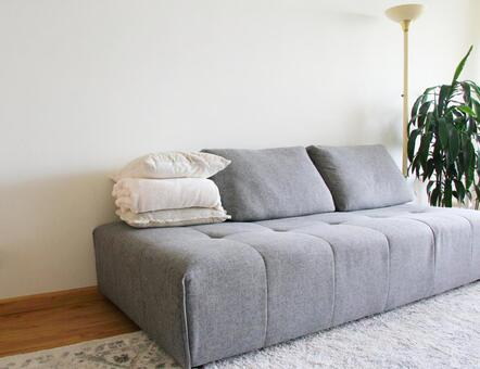 Living room couch 1