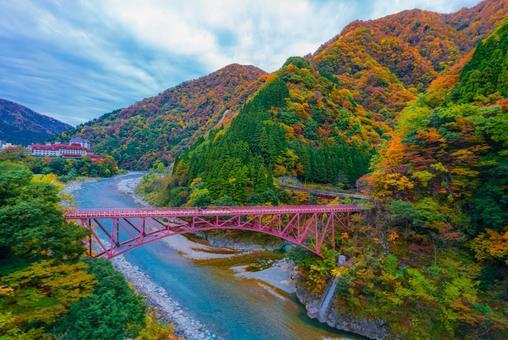 Autumn scenery from the window of the Kurobe Gorge Railway truck train