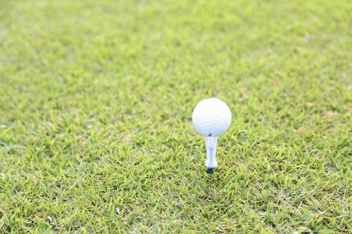 Grass and golf ball 7